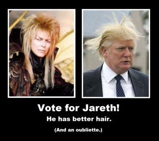 Jareth For President